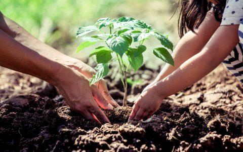 En marcha hacia un empleo doblemente sostenible