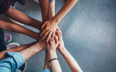 Mirando hacia la diversidad