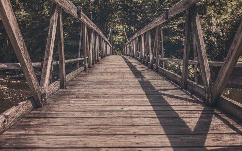 Autoliderazgo : gestionando las paradojas de nuestra vida