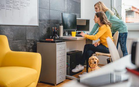 Mascotas en la oficina, espacios <i>pet friendly</i>