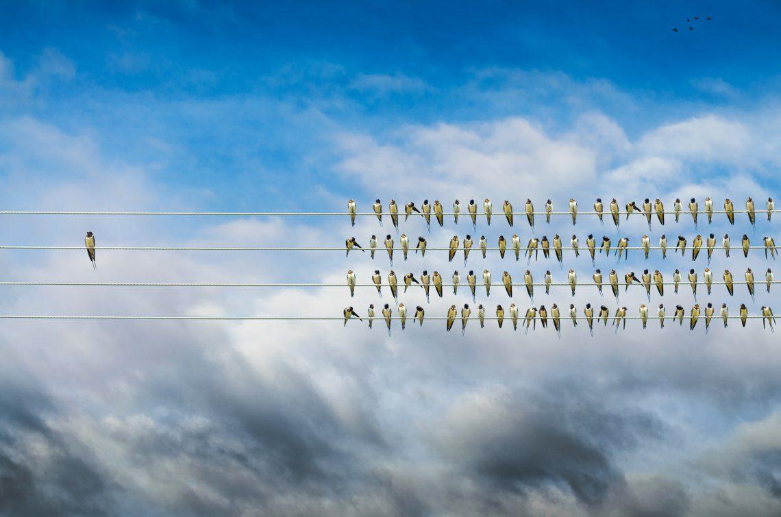 ¿Cómo enfrentarse a la resistencia al cambio organizacional?