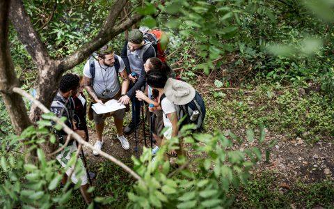 Outdoor training: ¿cómo se aplica al mundo empresarial?