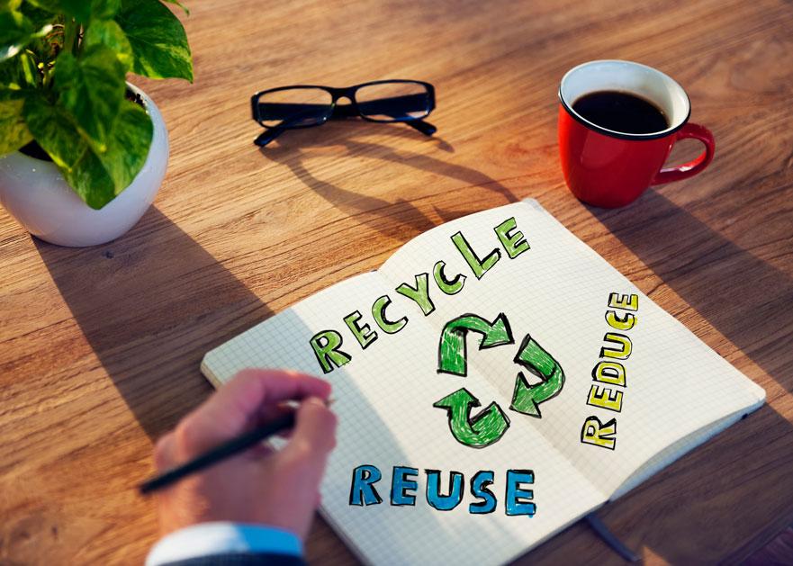 Cómo convertir la oficina en un espacio sostenible