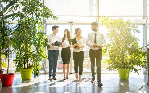 Oficina verde, oficina más productiva