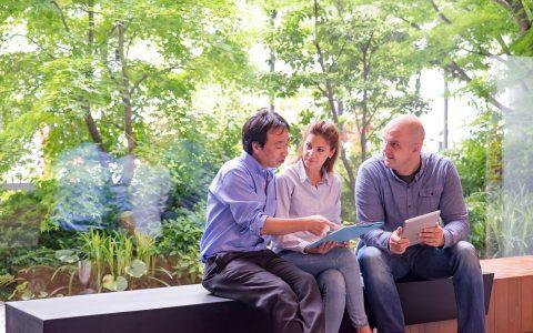 Feng Shui en la oficina: cómo organizar el entorno laboral