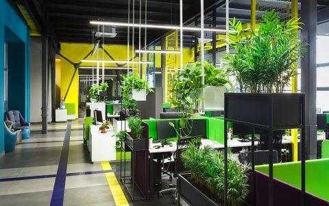 Colores para aumentar la productividad en el entorno laboral
